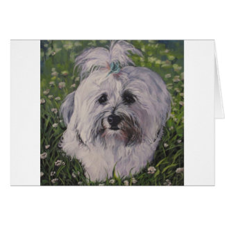 Beautiful Realistic Havanese Dog Art Painting Card