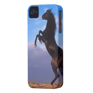 Beautiful rearing black horse with blue sky photo iPhone 4 cover