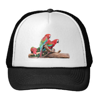 beautiful red and blue parrots trucker hat