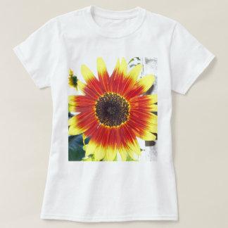 Beautiful Red and Yellow Sunflower Tshirts