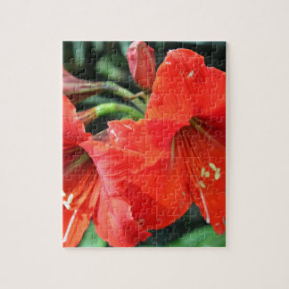 Beautiful Red Flower Photograph Jigsaw Puzzle
