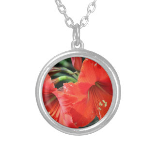 Beautiful Red Flower Photograph Silver Plated Necklace