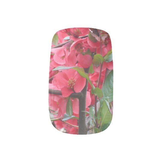 Beautiful Red Japanese Quince Minx Nail Art