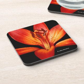 Beautiful Red Orange Asiatic Lily Gran Paradiso Drink Coaster