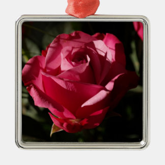 Beautiful red rose ornaments