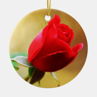 Beautiful red rose christmas ornament