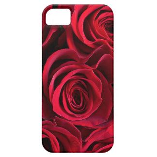 Beautiful Red Rose Floral iPhone 5 5S iPhone 5 Cover