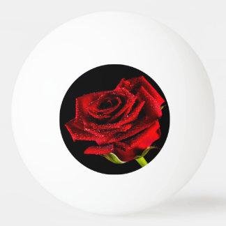 Beautiful red rose ping pong ball