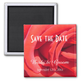 beautiful red rose save the date  wedding magnet. 2 inch square magnet