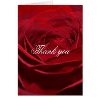 Beautiful Red Rose Thank you Card
