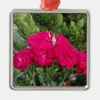 Beautiful Red Roses Ornaments