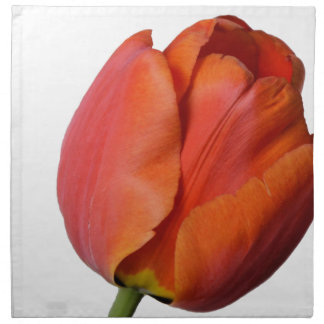 Beautiful red tulip of a flower from Europe Napkin