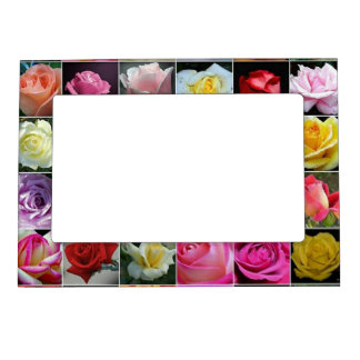 Beautiful Roses Collection, 5x7 Magnetic Frame