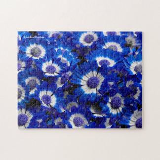 Beautiful Royal Blue Cineraria Flowers Jigsaw Puzzle