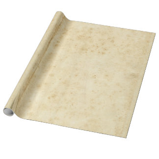 Beautiful Rustic Stained Antique Blank Old Paper