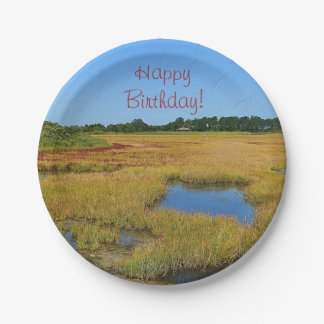Beautiful Salt Water Marsh Paper Plate