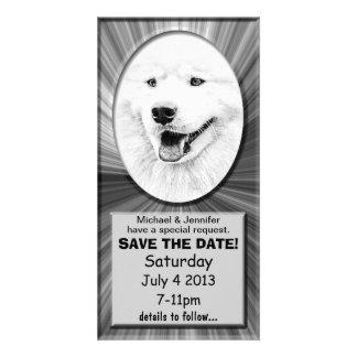 Beautiful Samoyed dog art Photo Card Template