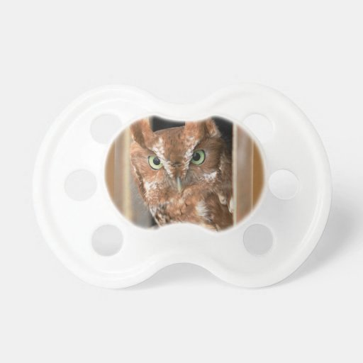 Beautiful Screech Owl Add Text Customize Baby Pacifier
