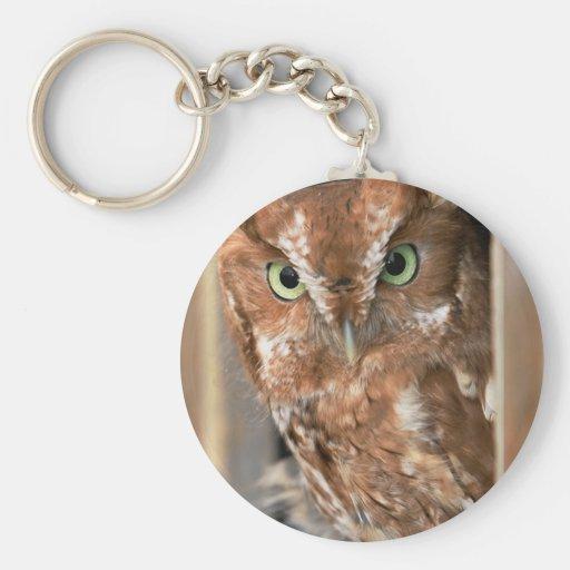 Beautiful Screech Owl Add Text Customize Key Chain