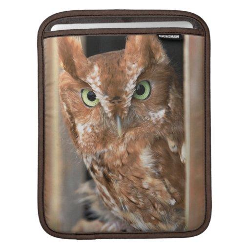 Beautiful Screech Owl  Text Customize iPad Sleeve