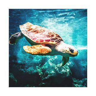 Beautiful Sea Turtle Ocean Underwater Image Canvas Print