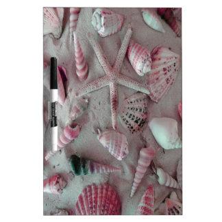 Beautiful Seashells Dry Erase Board