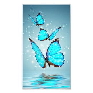 beautiful shiny blue butterfly photo print