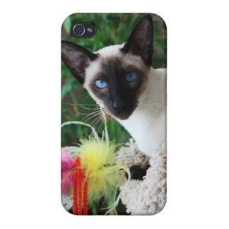 Beautiful Siamese Cat Playing With Toy iPhone 4 Covers