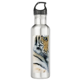 Beautiful siberian tiger 710 ml water bottle
