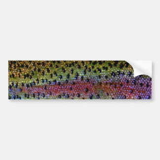 """Beautiful Skin, Rainbow Bronze"" Bumper Sticker"