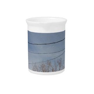 Beautiful sky drink pitcher