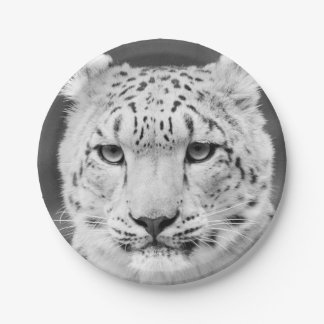 Beautiful Snow Leopard Black and White Portrait Paper Plate