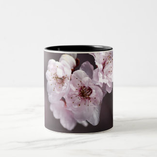 Beautiful Soft Blossom - Mug