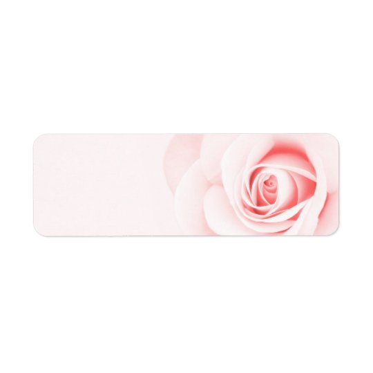 Beautiful soft pale pink rose flower floral return address label