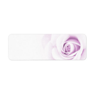 Beautiful soft pale purple rose flower floral return address label