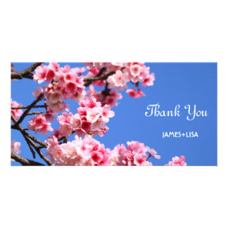 Beautiful Spring Cherry Blossom Photo Card Template