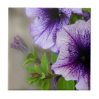 Beautiful spring flowers purple small square tile
