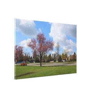 Beautiful spring park landscape photography canvas print