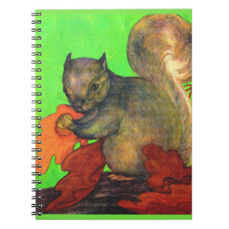 beautiful squirrel notebook
