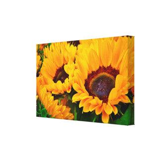 Beautiful Summertime Sunflower Painting Canvas Print