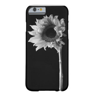 Beautiful Sunflower Portrait in Black and White Barely There iPhone 6 Case