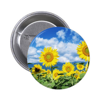 Beautiful Sunflowers Button