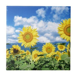 Beautiful Sunflowers Small Square Tile