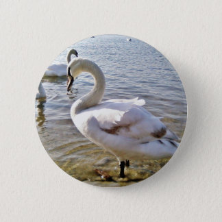 Beautiful Swan Bird 6 Cm Round Badge