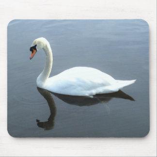 Beautiful Swan Reflection Mousepad