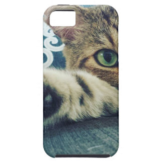 Beautiful Tabby Cat with Green Eyes Case For The iPhone 5