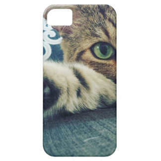 Beautiful Tabby Cat with Green Eyes iPhone 5 Cases