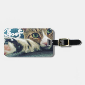 Beautiful Tabby Cat with Green Eyes Luggage Tag