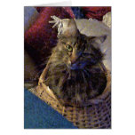 Beautiful Tabby Maine Coon Kitty Cat in a Basket Greeting Card