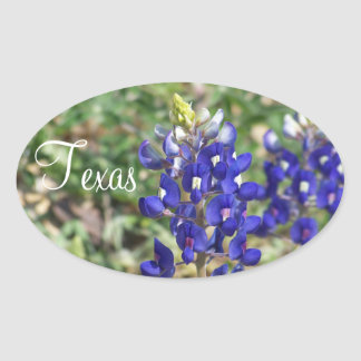 Beautiful Texas Bluebonnet Wildflower Sticker